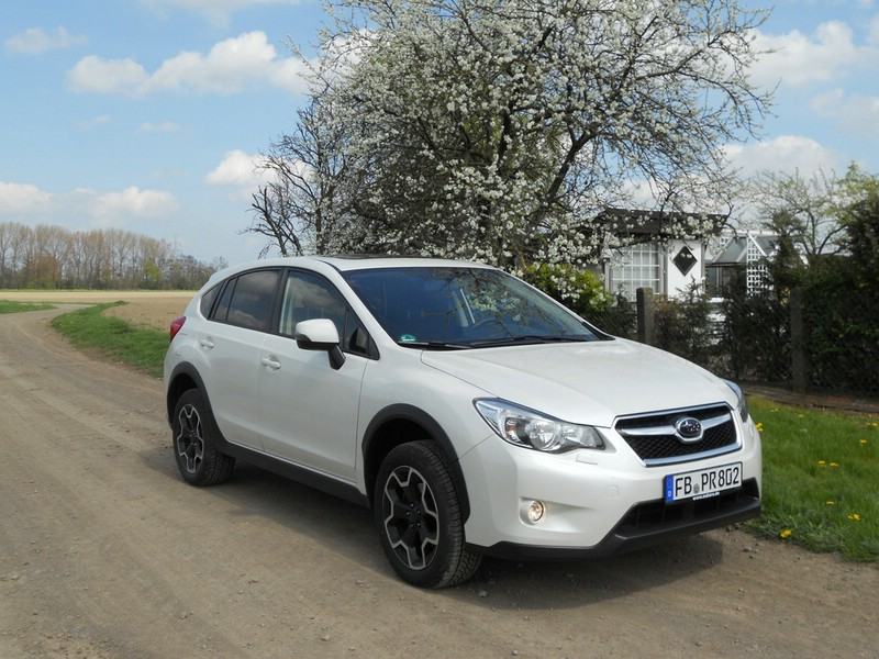 Subaru XV in Weiß (Standaufnahme)