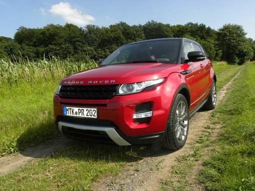 Range Rover Evoque au der Wiese