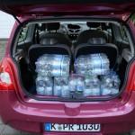 Das Fassungsvermögen des Renault Twingo Liberty 1.2