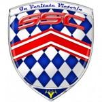 Das Logo von dem Autohersteller Shelby SuperCars