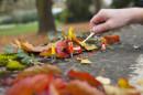 Schwere Last mit leichten Blättern - Adam Modellauto