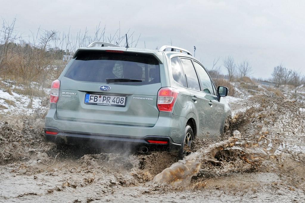 Der Subaru Forester 2.0 D Active in der Heckansicht