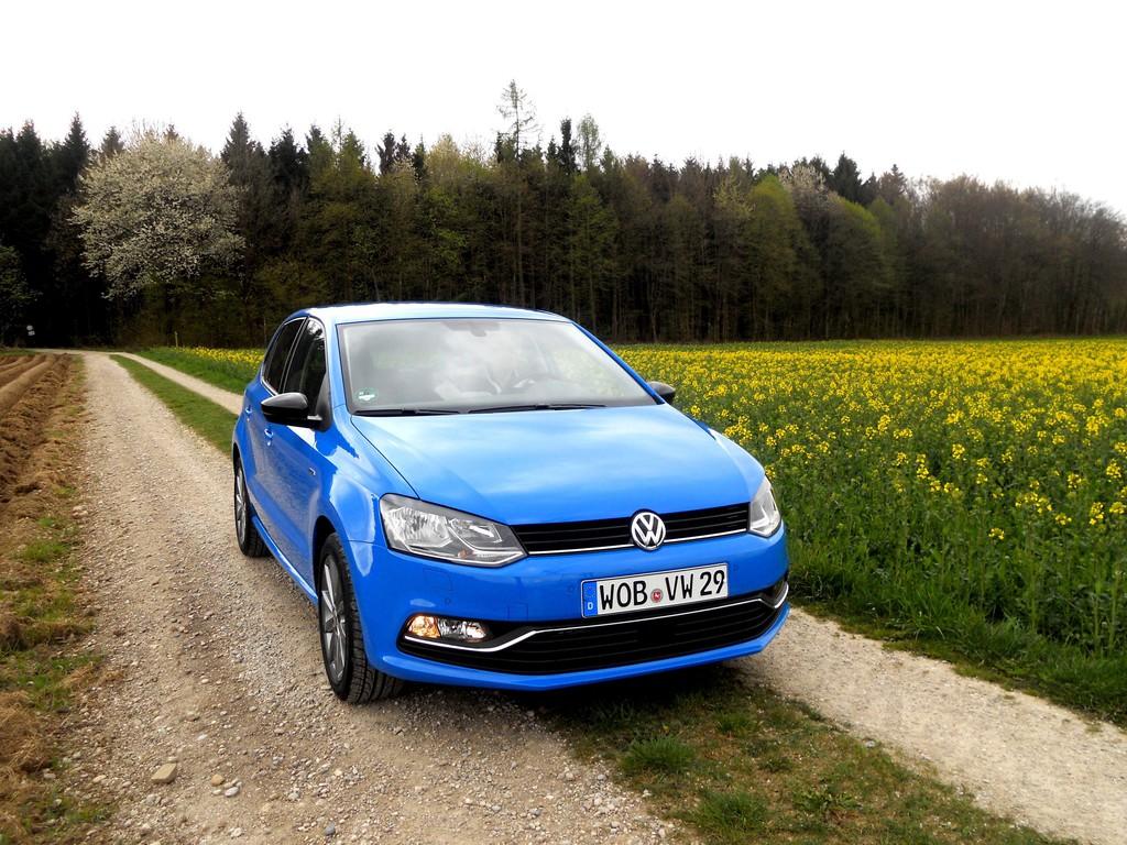 Blauer VW Polo6 in der Frontansicht