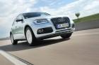 Bildaufnahme von einer Fahrt mit dem Audi Q5 2.0 TDI clean diesel quattro