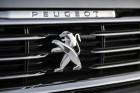 Peugeot 508 Kühlergrill