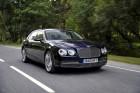 Bentley Fyling Spur, Vorderansicht