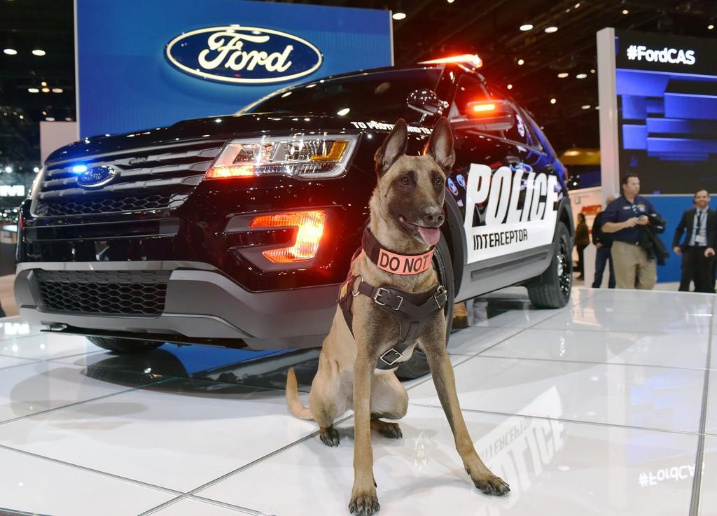 Polizeihund Keegan und der Ford Police Interceptor Utility.