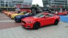 Ford Mustang in verschiedenen Farben