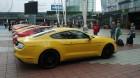 Ford Mustang verschiedene Modelle