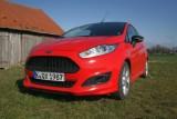 Ford Fiesta Sport, Grill